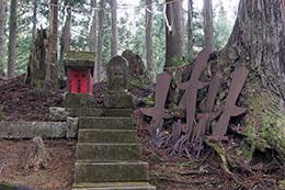 190425高尾神社の大スギ⑨