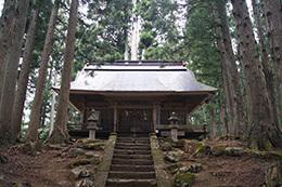 190425高尾神社の大スギ⑩