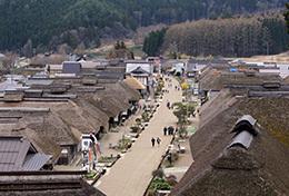 190425高尾神社の大スギ⑬