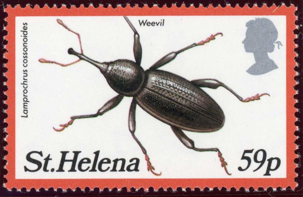 St-Helena:1983-4