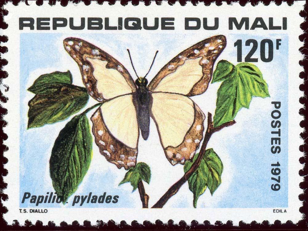 Mali:1979-2