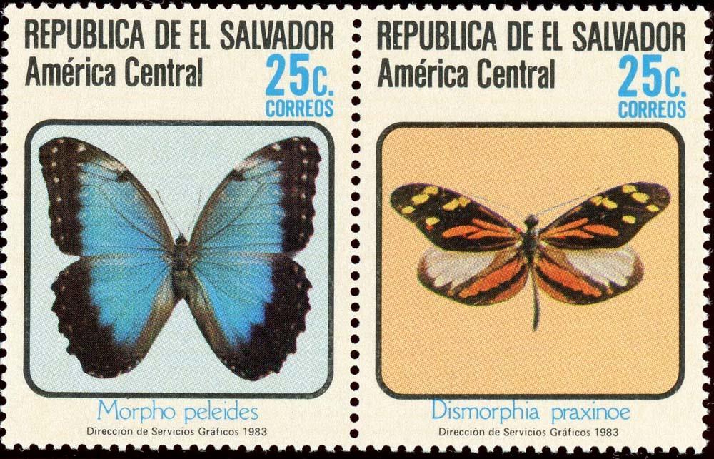 El-Salvador:1983-4