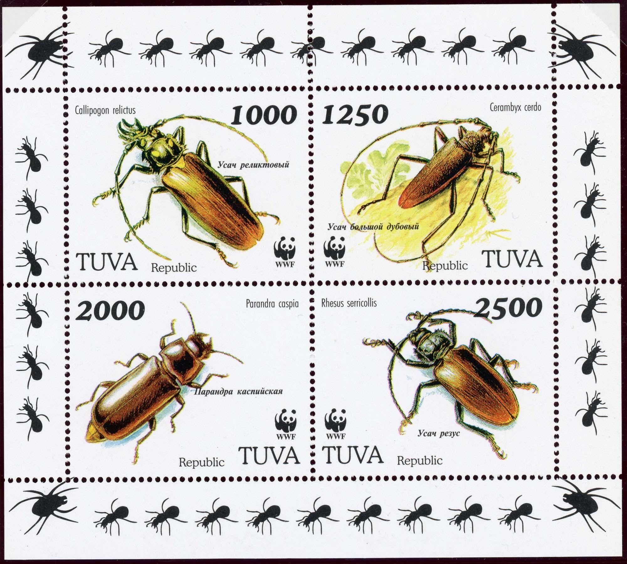 Tuva-1.jpg