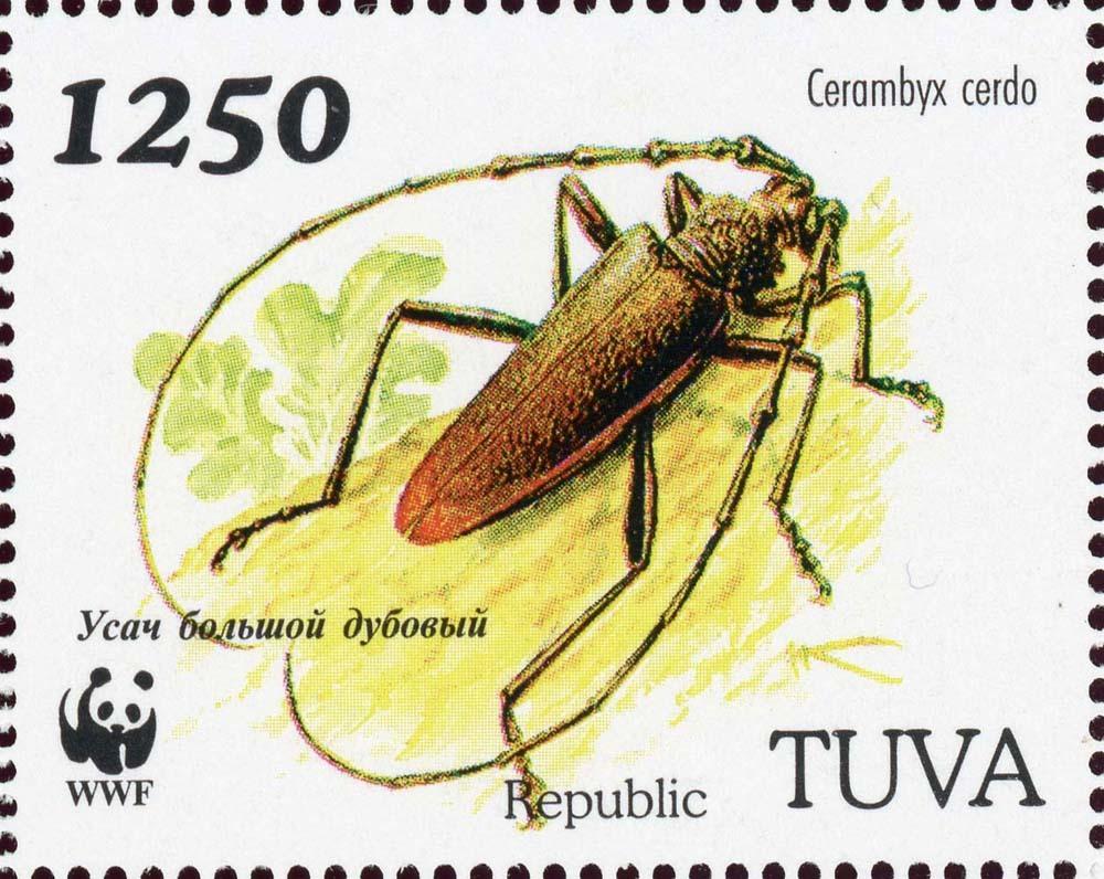 Tuva-1b.jpg