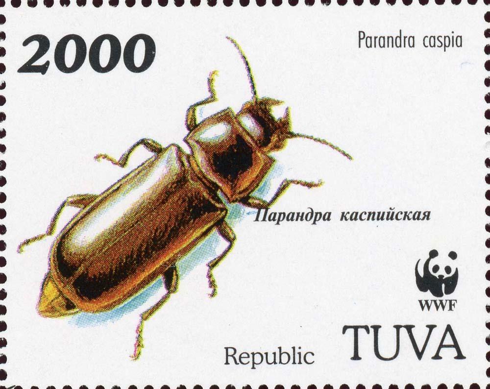 Tuva-1c.jpg