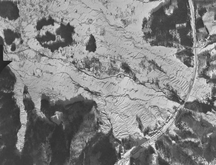 2019-8-24杉津航空写真1949-1-8