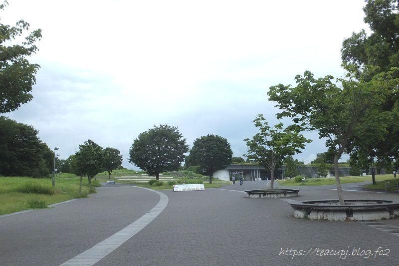DSCF0513-800-p.jpg