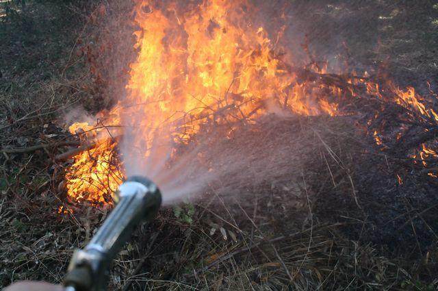 茨城県の自然 炭火 焼き芋 バーベキュー