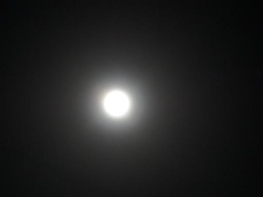 20190617・満月の夜1