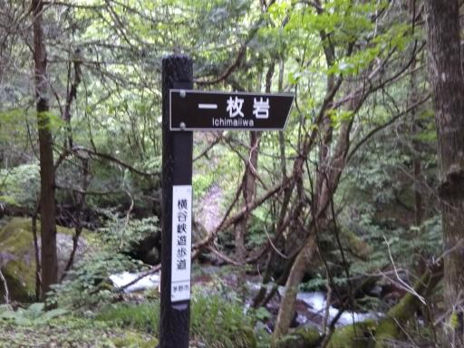 20190623・横谷渓谷4-02・一枚岩(スマホ)・中