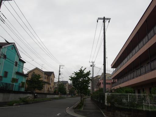 20190705・いつもの狭山湖1-05