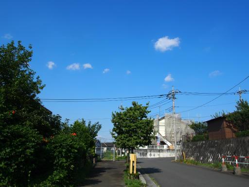 20190804・青い空白い雲14・東側