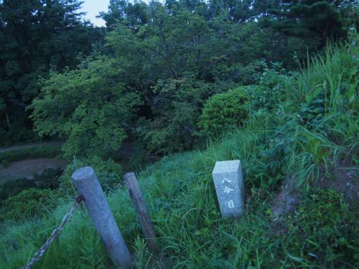 20190812・西武園花火最終日2-05