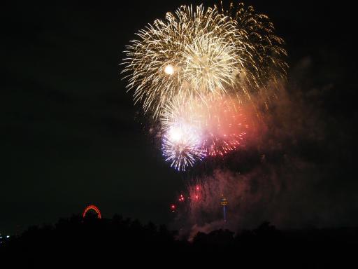 20190812・西武園花火最終日3-14