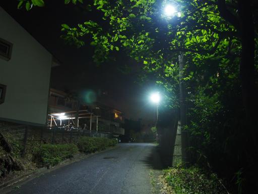20190812・西武園花火最終日3-22