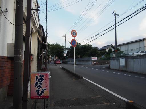 20190812・西武園花火最終日1-02