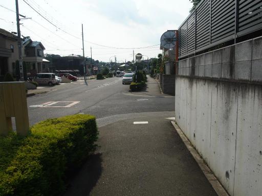 20190825・埼玉県選挙の日12