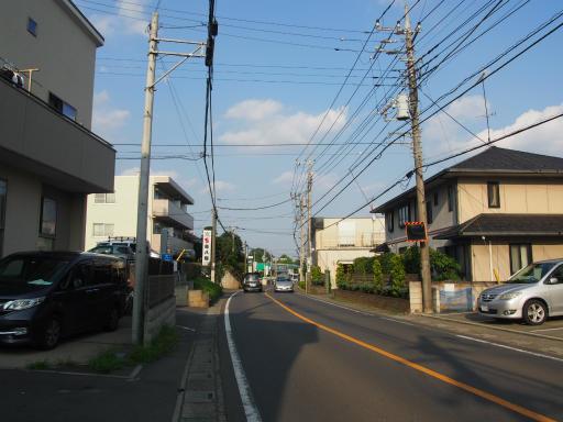 20190825・埼玉県選挙の日17