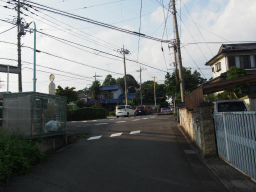 20190825・埼玉県選挙の日16