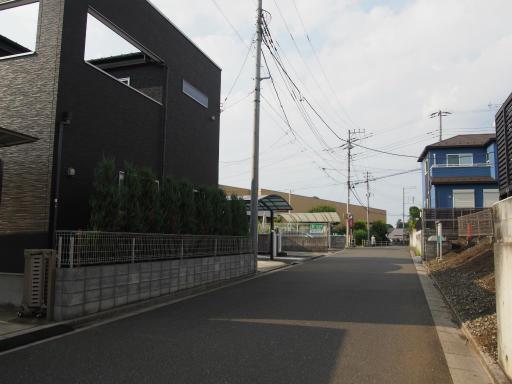 20190825・埼玉県選挙の日13・ヤオコーへ