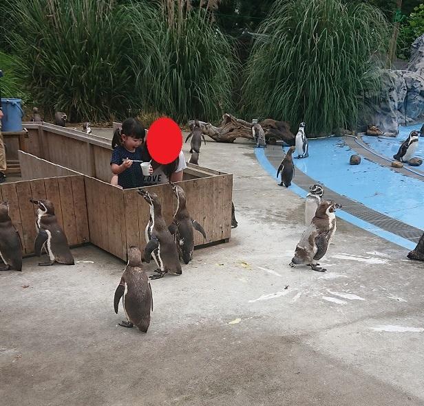 埼玉県こども自然動物公園♪3.JPG