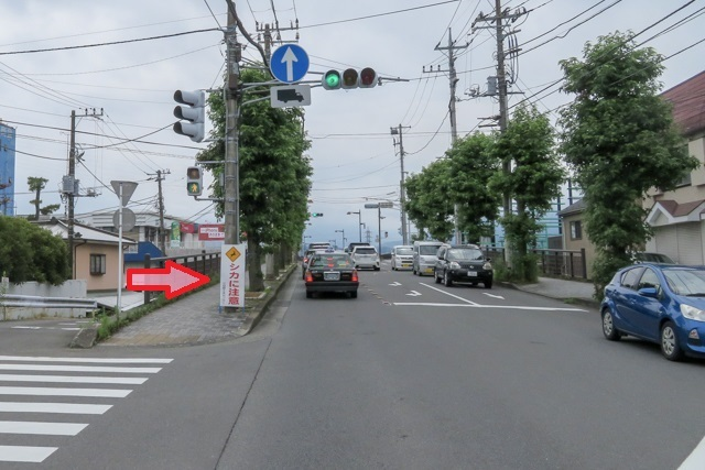 神奈東(11)