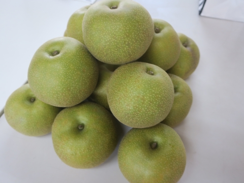 「父の実家から梨が届きました!」⑦
