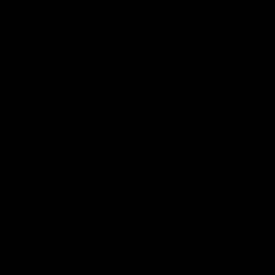 九曜紋 黒