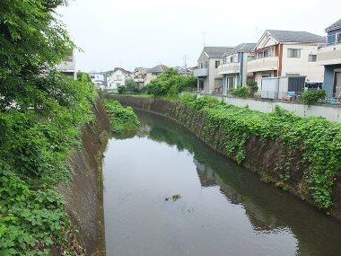 6柳瀬川0722