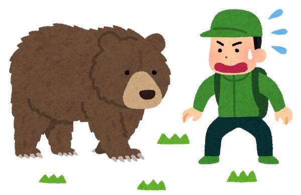 クマ 熊 いらすとや