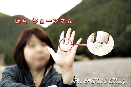 011eIMG_4457.jpg