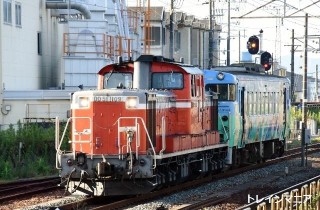 DSC_7290 (640x420)
