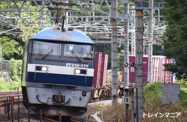 DSC_7425 (640x419)