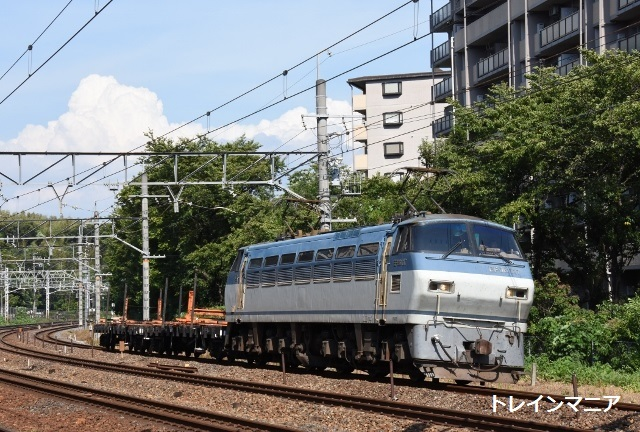 DSC_7521 (640x432)
