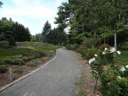 バラ花壇とヒースガーデン