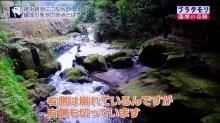 関吉の疎水溝5