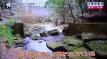 関吉の疎水溝6