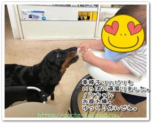 2019-08-10-のあちゃん2