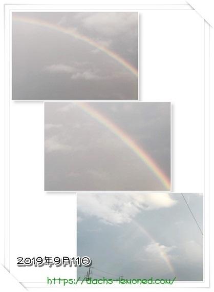 2019年9月11日-虹