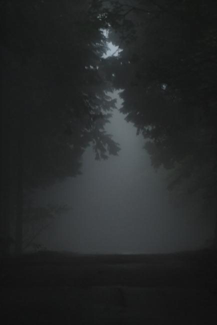 15618-濃霧-1