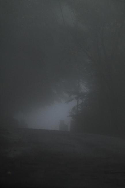 15619-濃霧-2