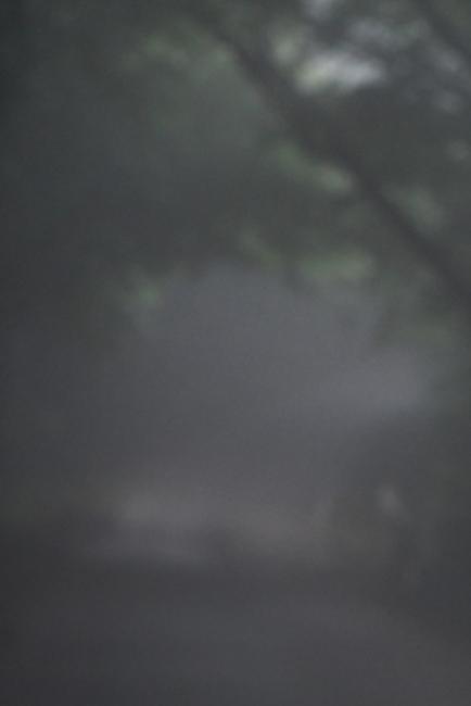 15620-濃霧-3