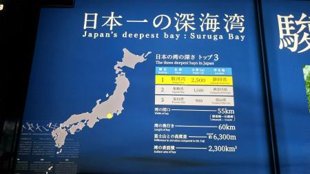 20190405深海水族館3