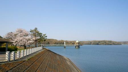 20190404狭山湖5