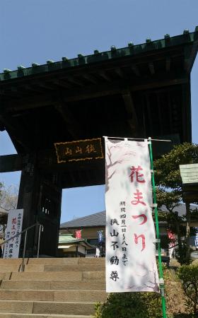 20190406狭山不動尊1