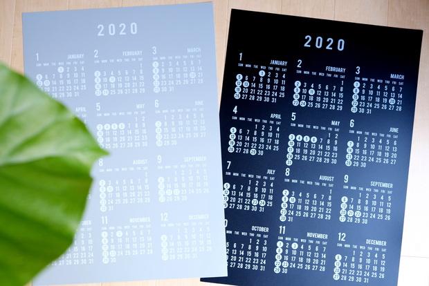セリア・PPビッグカレンダー2020①