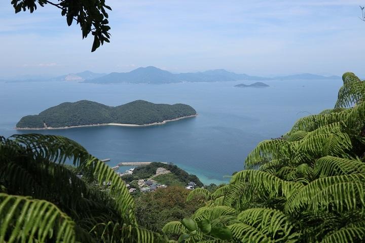柱島の山の途中から海を臨む