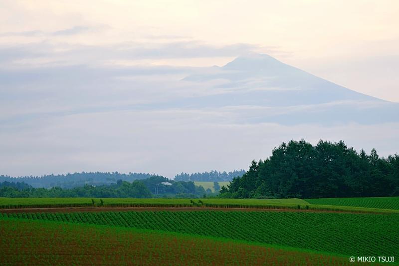 絶景探しの旅 - 1003 富良野岳の見える朝 (北海道 美瑛町)