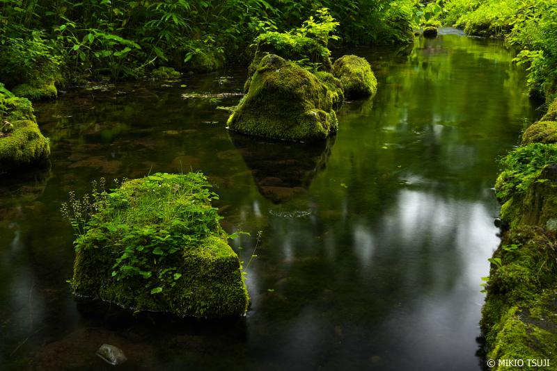絶景探しの旅 - 1022 森の空間にたたずむ苔むす岩 (大雪旭岳源水/北海道 東川町)