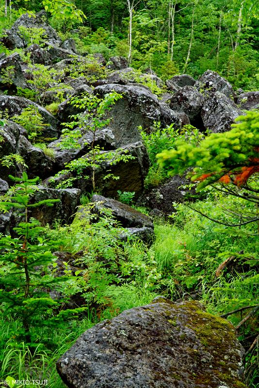 絶景探しの旅 - 1031 雨上りの千畳くずれ (北海道 鹿追町)